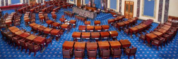 Senate Election Updates